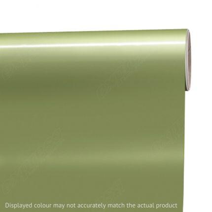Siser® EasyPSV™ Permanent Alligator Green