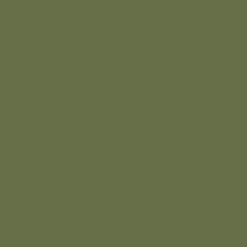 Siser® EasyWeed® Green Olive