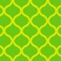 Oralite 7900 029 Yellow-Green Fluorescent Reflective