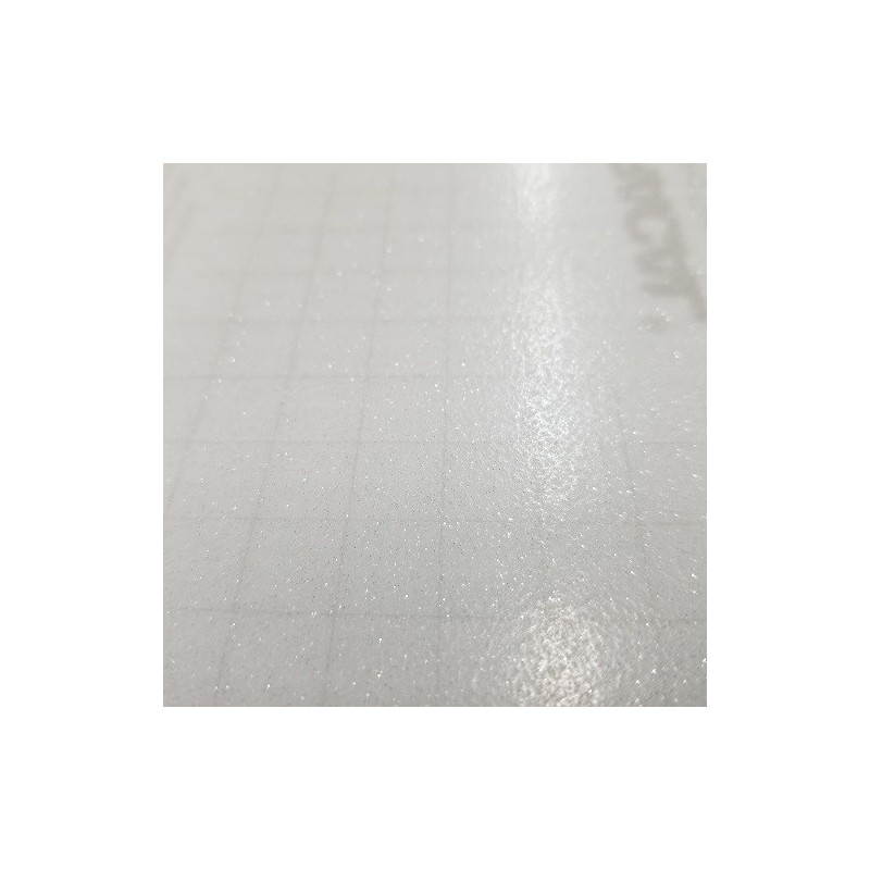Oracal 8810-090 Silver Frosted Glass 2