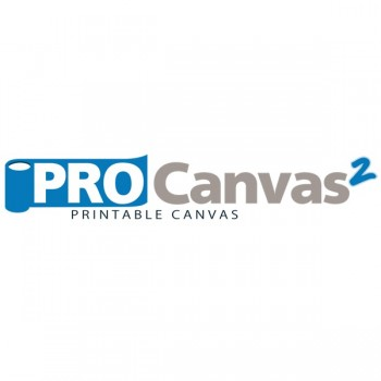 ProCanvas2 Econo Art Canvas