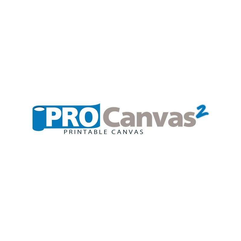 ProCanvas2 Econo Art Canvas