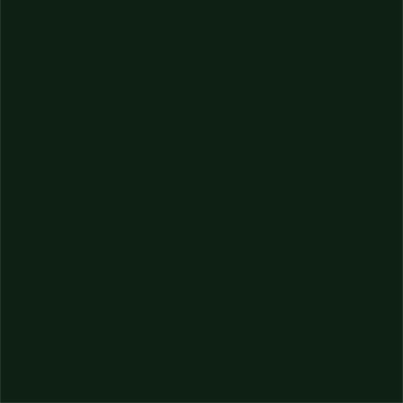 Siser® EasyWeed® Dark Green