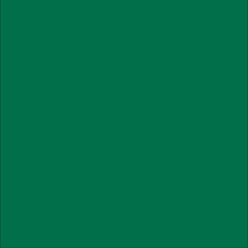 Siser® EasyWeed® Green