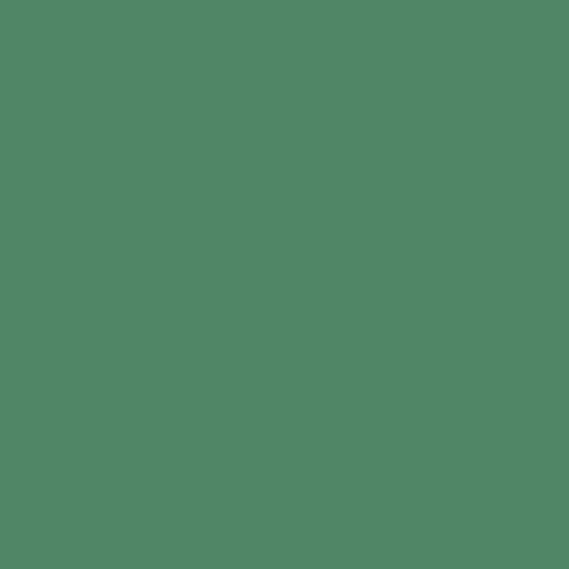 Siser® EasyWeed® Cadette Green