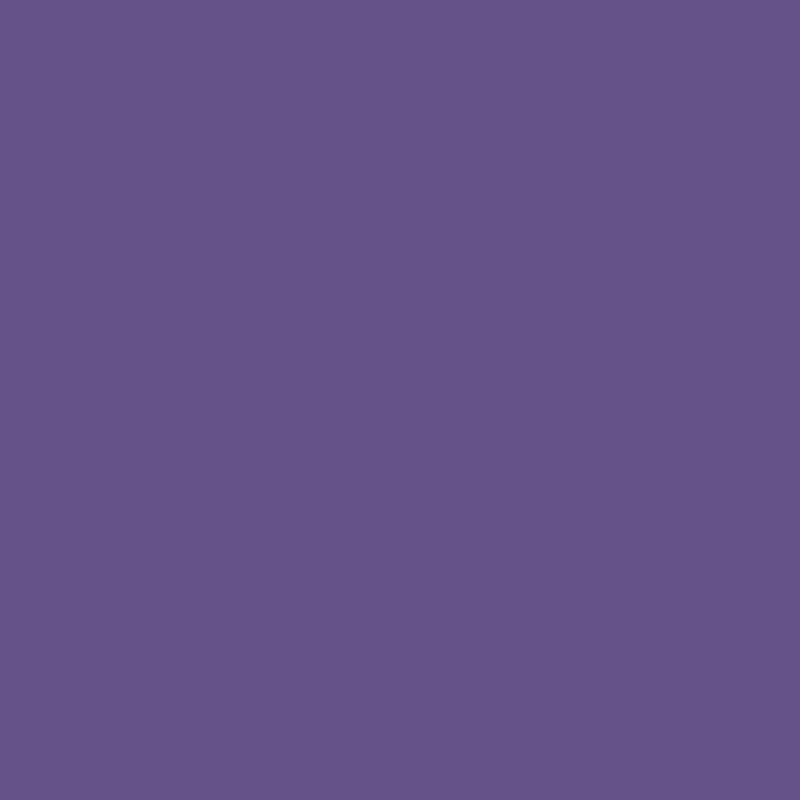 Siser® EasyWeed® Wicked Purple