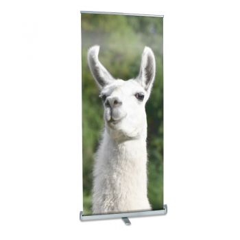 DI Llama Performance Roll Up Banner Stand - 33in x 78in